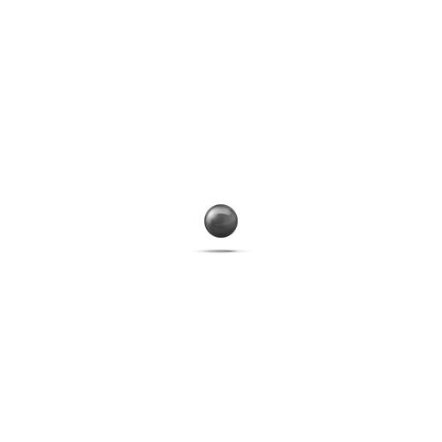 윅스인터내셔널 세라믹스피드 볼 그레이드 3 - 2.381mm